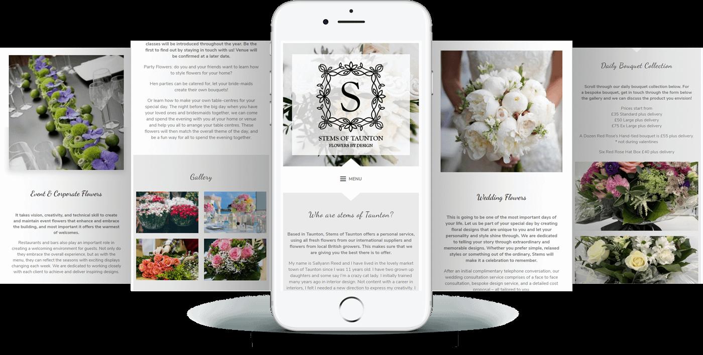 stems of taunton website mobile
