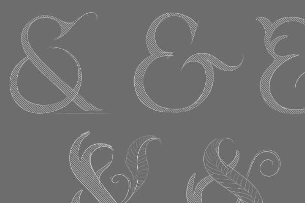 Fallow & Fern- Brand process sketches